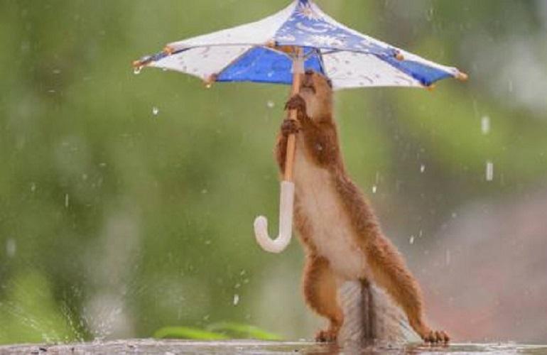 La pluie est magnifique